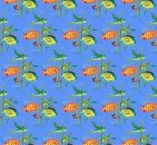 Teste padrão de repetição sem emenda de uma variedade de peixes e algas Imagens de Stock