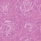 Teste padrão de Rosa Foto de Stock Royalty Free