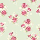 Teste padrão 3 de Rosa Imagens de Stock