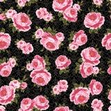 Teste padrão de Rosa Fotografia de Stock Royalty Free