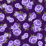 Teste padrão de Rosa Imagens de Stock Royalty Free