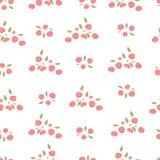 Teste padrão de Rosa Imagem de Stock Royalty Free