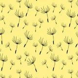 Teste padrão de sementes do dente-de-leão Imagens de Stock