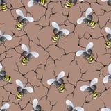 Teste padrão de uma abelha Imagens de Stock Royalty Free