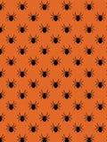 Teste padrão decorativo da aranha Fotografia de Stock