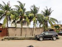 Teste padrão dianteiro da árvore de coco da casa foto de stock royalty free