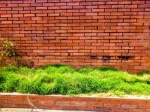 Teste padrão dianteiro da grama da casa imagens de stock
