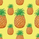 Teste padrão do abacaxi Fotografia de Stock Royalty Free