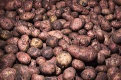 Teste padrão do alimento dos vegetais crus das batatas Imagens de Stock