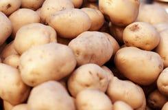 Teste padrão do alimento dos vegetais crus das batatas Fotografia de Stock Royalty Free