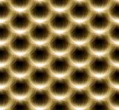 Teste padrão do amarelo da flor do alargamento da lente Imagens de Stock Royalty Free