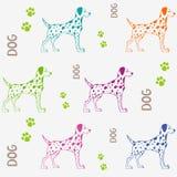 Teste padrão do cão Foto de Stock Royalty Free