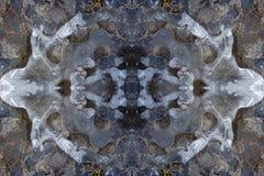 Teste padrão do caleidoscópio do gelo Imagens de Stock Royalty Free
