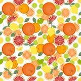 Teste padrão do citrino Fundo da fruta Fundo brilhante do verão com limão e laranja Imagens de Stock Royalty Free