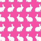 Teste padrão do coelho Imagens de Stock Royalty Free