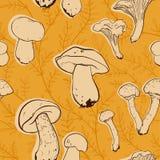 Teste padrão do cogumelo Foto de Stock