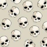 Teste padrão do crânio Imagem de Stock Royalty Free