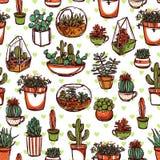 Teste padrão do esboço da cor das plantas carnudas e dos cactos Fotografia de Stock Royalty Free