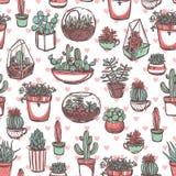 Teste padrão do esboço da cor das plantas carnudas e dos cactos Imagens de Stock Royalty Free