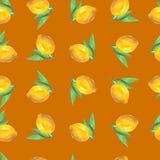 Teste padrão do fruto da aquarela Fotos de Stock Royalty Free