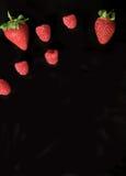 Teste padrão do fruto da framboesa e da morango no fundo preto Fotografia de Stock Royalty Free