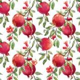 Teste padrão do fruto da romã ilustração stock