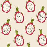 Teste padrão do fruto do dragão, ilustração do vetor Fotografia de Stock
