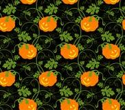Teste padrão do fundo das abóboras de Halloween Foto de Stock Royalty Free