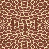 Teste padrão do Giraffe Fotografia de Stock