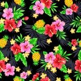 Teste padrão do hibiscus Fotos de Stock Royalty Free