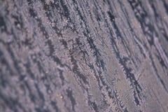 Teste padrão do inverno Flocos de neve brancos Cor cinzenta Fotos de Stock Royalty Free