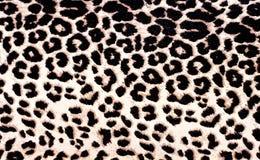Teste padrão do leopardo foto de stock