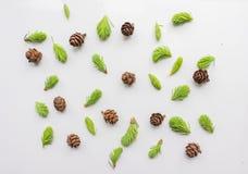 Teste padrão do Natal com ramos e cones de árvore Imagens de Stock Royalty Free