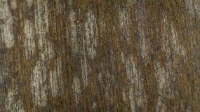Teste padrão do painel de madeira Imagem de Stock