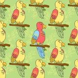 Teste padrão do papagaio em um fundo amarelo Teste padrão do pássaro Imagem de Stock