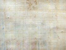 Teste padrão do papiro Foto de Stock Royalty Free