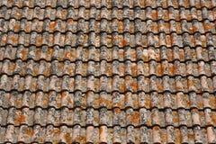 Teste padrão do telhado Foto de Stock Royalty Free