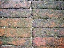 Teste padrão do tijolo, fundo do tijolo Foto de Stock