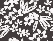 Teste padrão do vetor com as flores tropicais do plumeria Fotografia de Stock