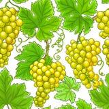 Teste padrão do vetor das uvas imagem de stock