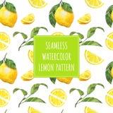 Teste padrão do vetor do fruto do limão da aquarela Fotografia de Stock