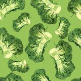 Teste padrão dos brócolis da aquarela Imagens de Stock Royalty Free