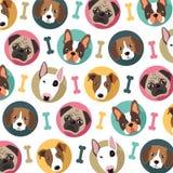 Teste padrão dos cães Imagem de Stock