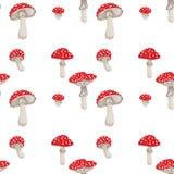 Teste padrão dos cogumelos Foto de Stock Royalty Free