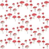 Teste padrão dos cogumelos Imagem de Stock Royalty Free