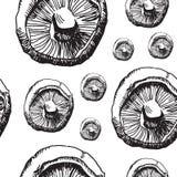Teste padrão dos cogumelos imagem de stock
