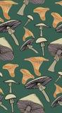 Teste padrão dos cogumelos ilustração stock