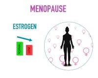 Teste padrão dos elementos do fundo da menopausa, cartaz abstrato do negócio da qualidade super ilustração stock