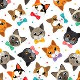 Teste padrão dos gatos & do amigo Foto de Stock