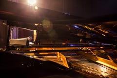 Teste padrão dos martelos e das cordas dentro do piano, fim acima Um humme Imagens de Stock Royalty Free